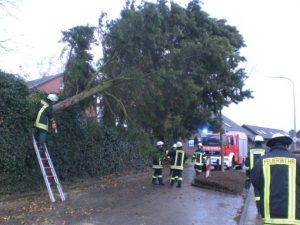 Die Technische Hilfeleistung ist sehr vielfältig und umfasst alle Einsätze vom Sturmschaden über Verkehrsunfälle bis hin zu Ölspuren