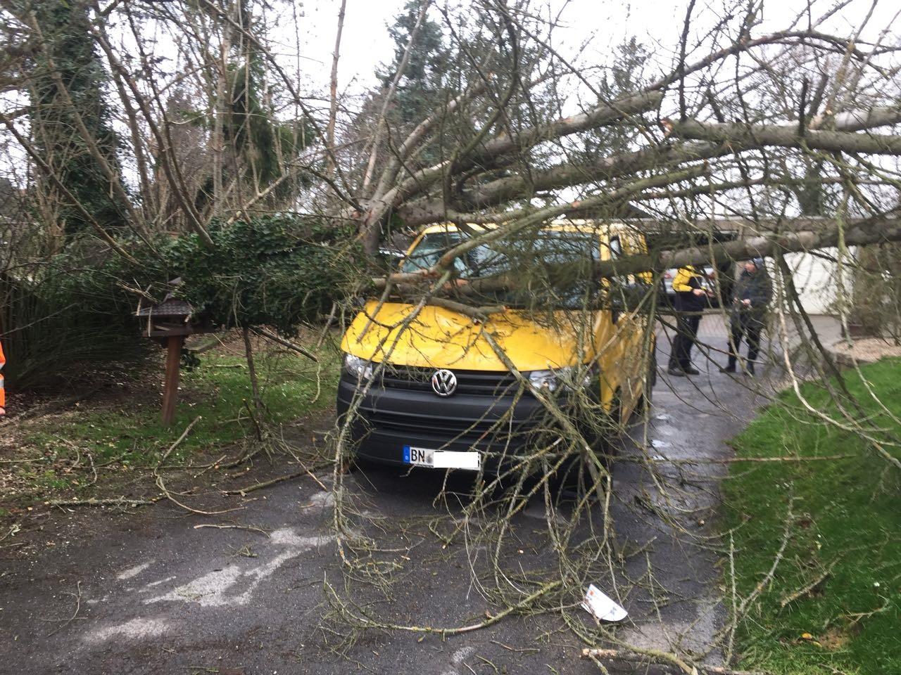 THL/ Baum auf Auto – Feuerwehr Haaren